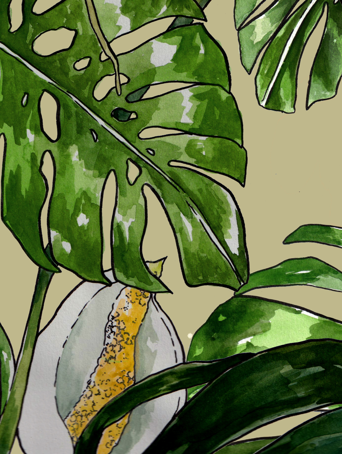 BLOGG_utdrag_monstera